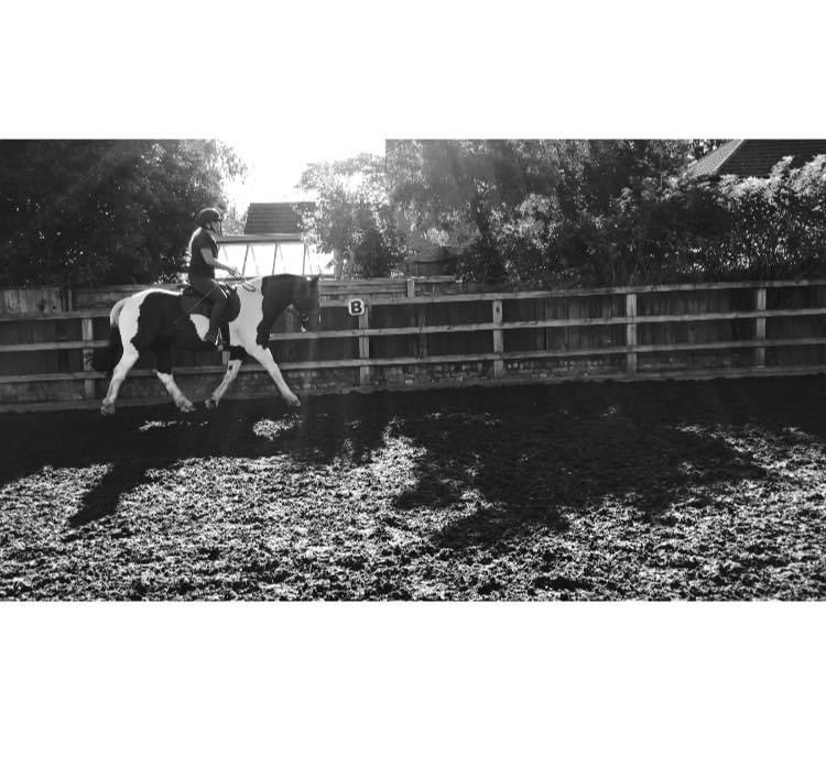 Folly Farm Equestrian Centre