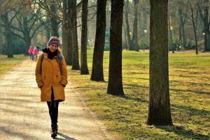 Winter Walks In Huntingdon